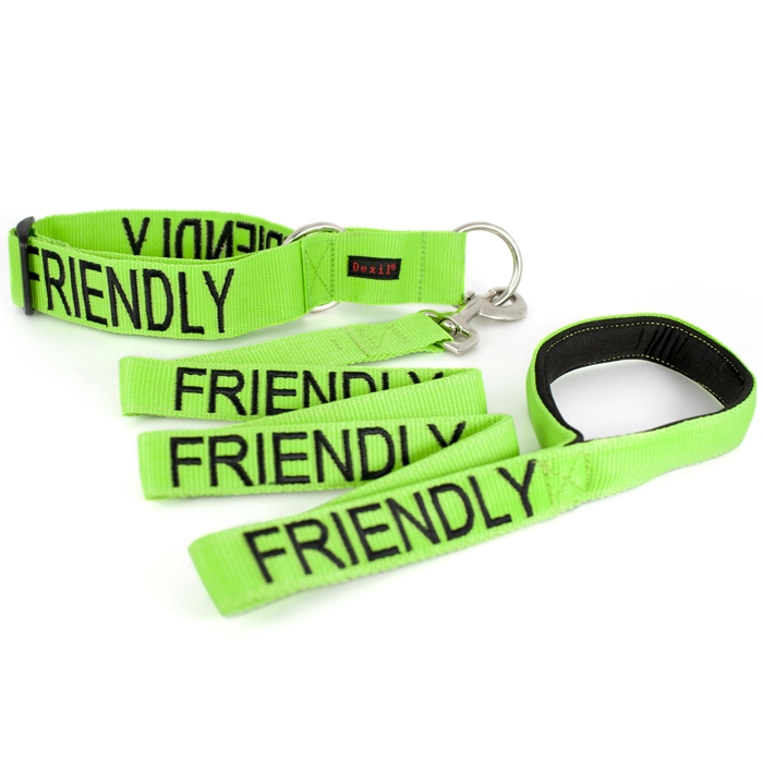 Friendly Collar and Leash Set