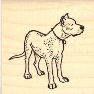 Standing Pit Bull Rubber Stamp