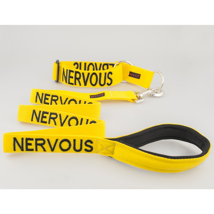 Nervous Collar and Leash Set