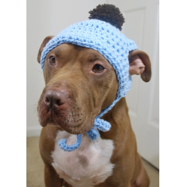 Baby Blue Crochet Hat with Brown Pom Pom