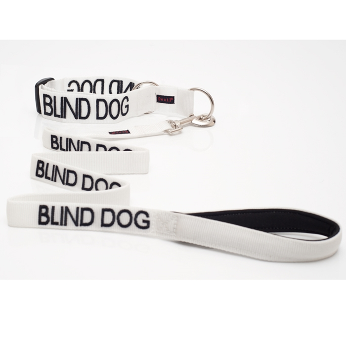 Blind Dog Collar and Leash Set