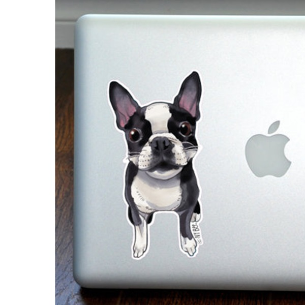Boston Terrier Full Color Large Decal