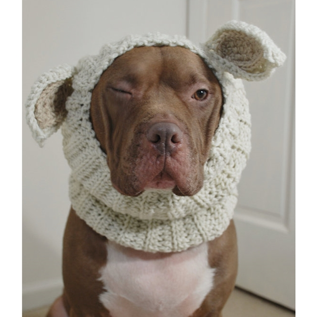 Cream Lamb Crochet Snood