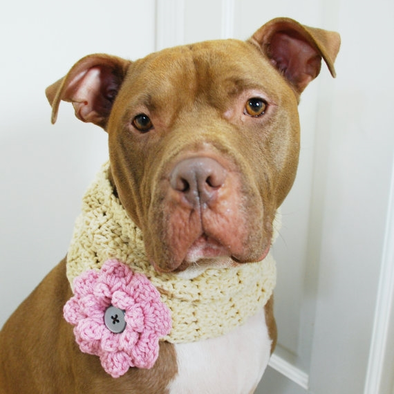 Cream with Pink Flower Crochet Cowl
