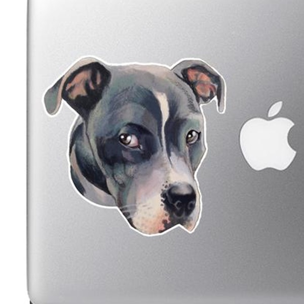 Gray Pitbull Face Full Color Large Decal