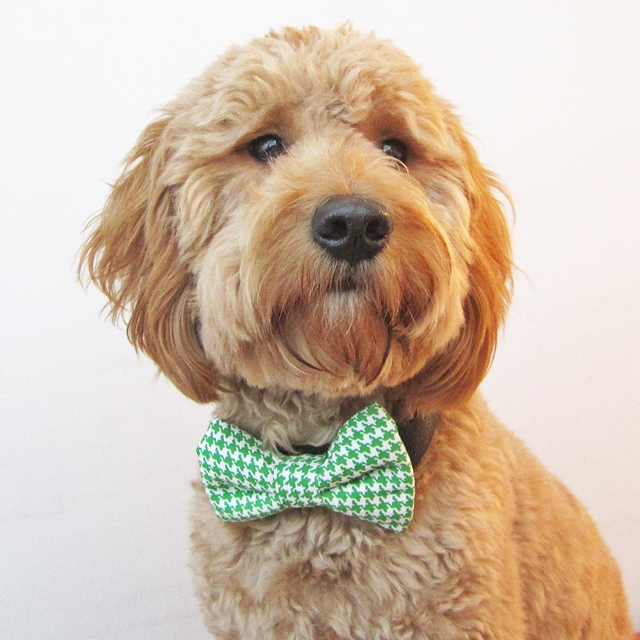 Green Houndstooth Bow Tie