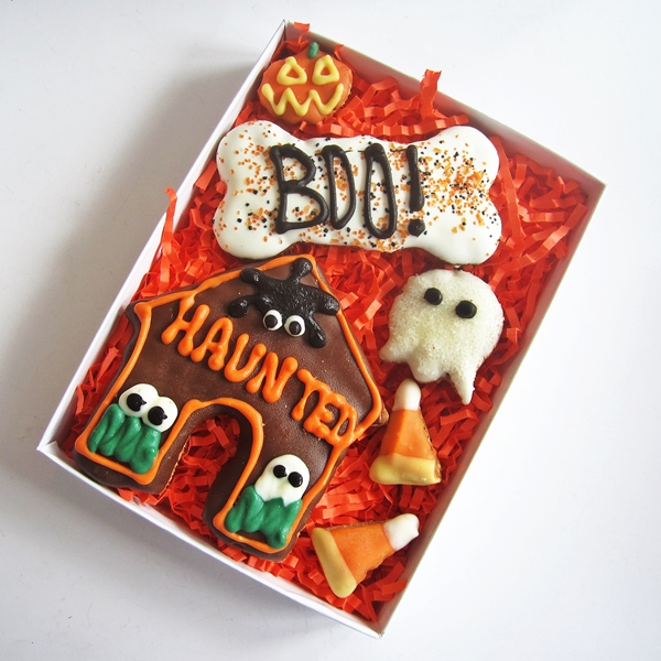 Haunted Boo Halloween Dog Treat Assortment