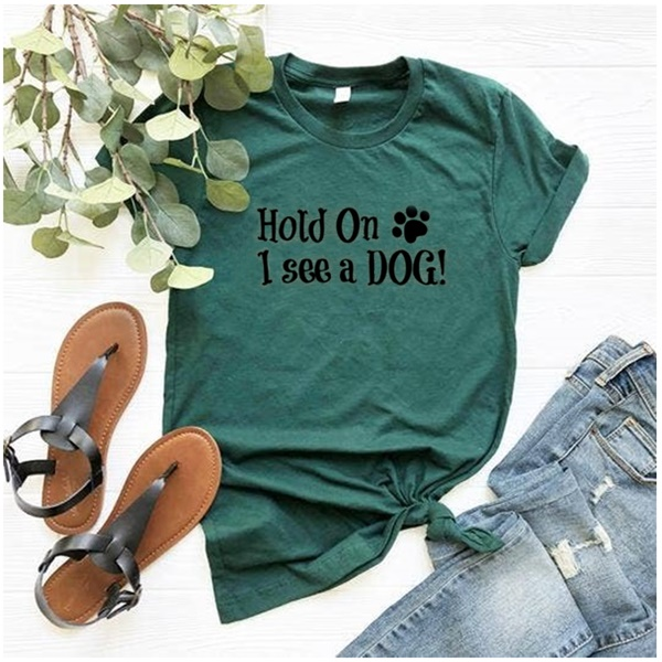Hold On I See a Dog T-Shirt Teal Triblend