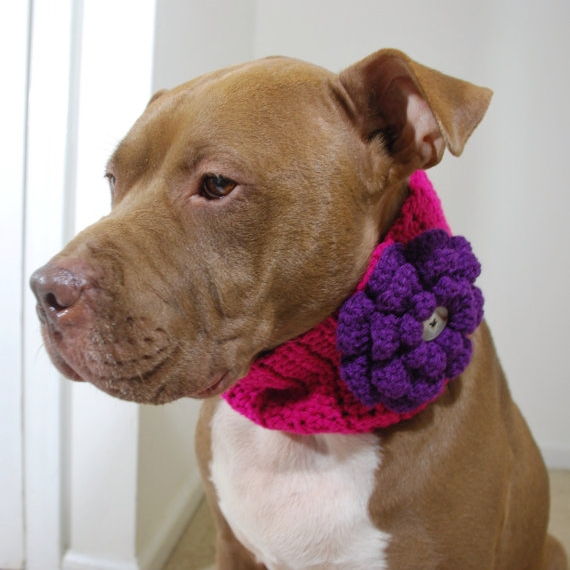 Hot Pink with Purple Flower Crochet Cowl