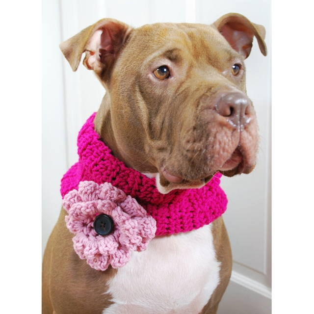 Hot Pink w/Flower Crocheted Cowl
