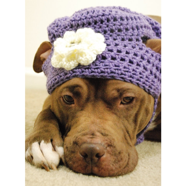 Lavender with White Flower Crochet Hat