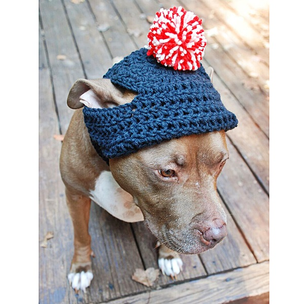 Navy Crochet Hat with Red and White Pom Pom