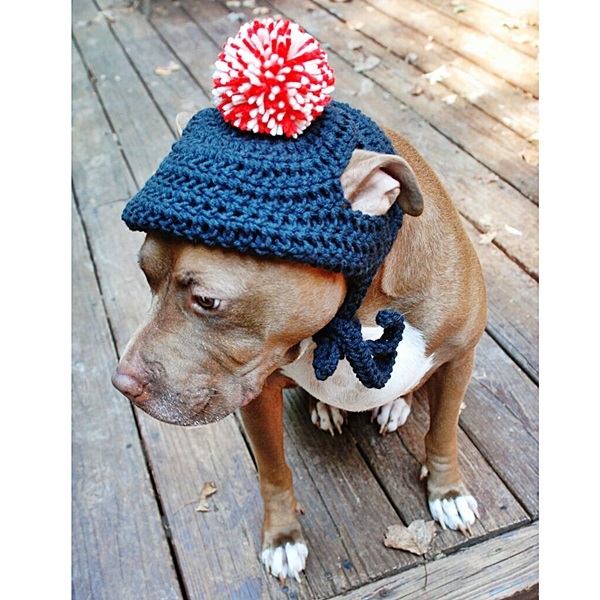Navy Crochet Hat With Red And White Pom Pom Dog Park