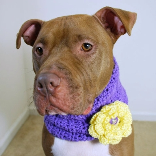 Purple with Yellow Flower Crochet Cowl