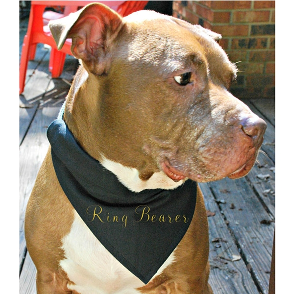 Ring Bearer Canvas Dog Bandana