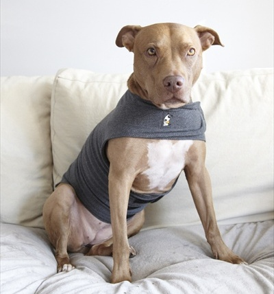 XS-XXL ThunderShirt for Dogs (multiple colors)