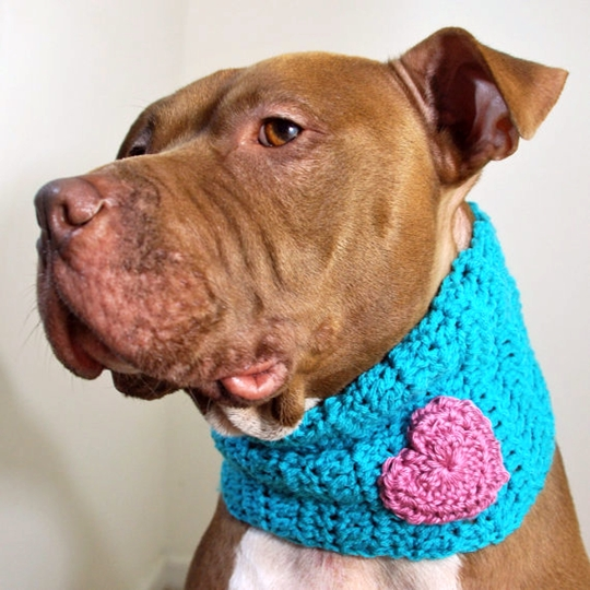 Teal with Pink Heart Crochet Cowl