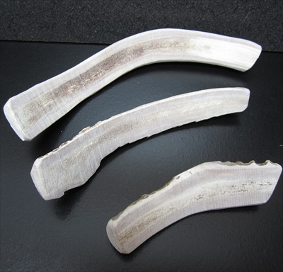 Split Deer Antler Chew