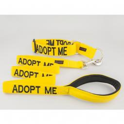 Adopt Me Collar and Leash Set