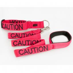 Caution Collar and Leash Set