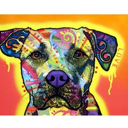Drip Love Pit Bull Dean Russo Print - Discontinued