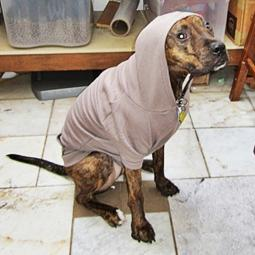 XL Pewter Fleece Doggie Hoodie
