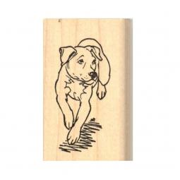 Running Pit Bull Rubber Stamp
