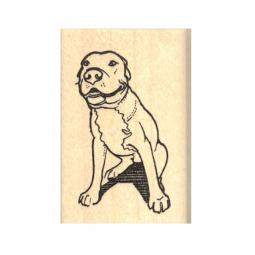 Ears Back Pit Bull Rubber Stamp