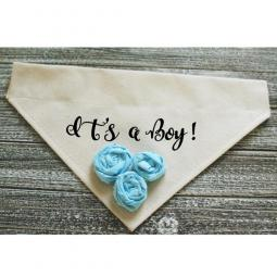 It's a Girl Boy Bandana with Blue Fabric Flowers