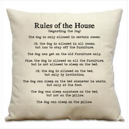 Rules of the House Pillow