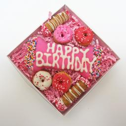 Pretty in Pink Birthday Gras Dog Treat Gift Box