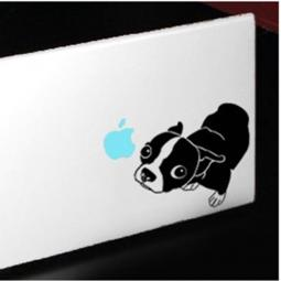 Boston Terrier Large Decal