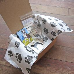 Boxer Tiny Gift Box