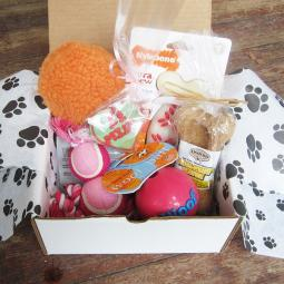 Dog-Gone Goodie Gift Box Full of Love