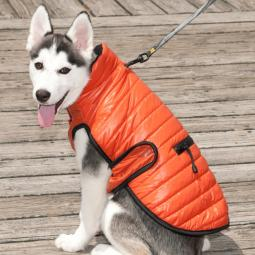 XXL Orange Brunswick Puffer Dog Coat