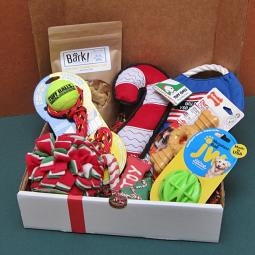 Christmas Dog-Gone Goodie Gift Box