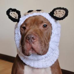 Cow Crochet Snood