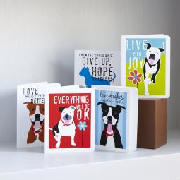 Set of Eight Love & Friendship Note Cards