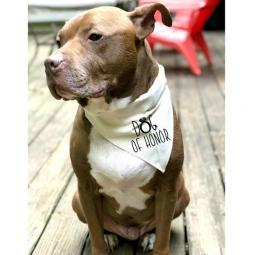 Dog of Honor with Ring Canvas Dog Bandana