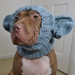 Elephant Crochet Snood