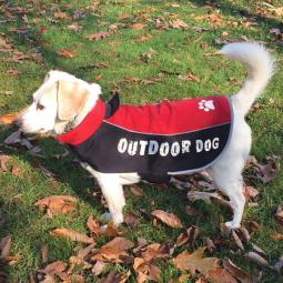 XL-XXL Red All Weather Dog Jacket