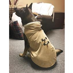 XL-XXL Camel Corduroy Toggle Dog Coat