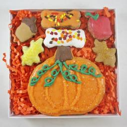 Fall Pumpkin  Dog Treat Assortment