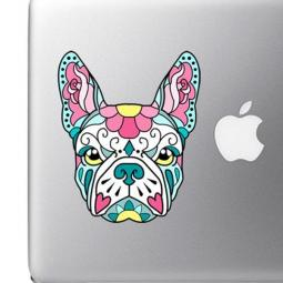 French Bulldog Sugar Skull Pink and Blue Full Color Decal