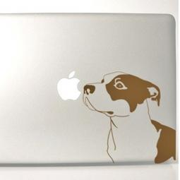 Gold Pit Bull Large Decal