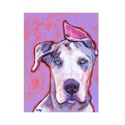 Great Dane Harlequin Pup Print