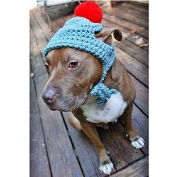 Grey with Red Pom Pom Crochet Hat