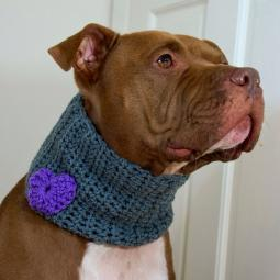 Grey with Purple Heart Crochet Cowl