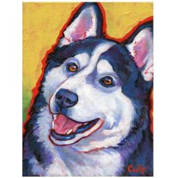 Husky Happy Print