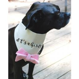 It's a Girl with Pale Pink Bow Canvas Dog Bandana